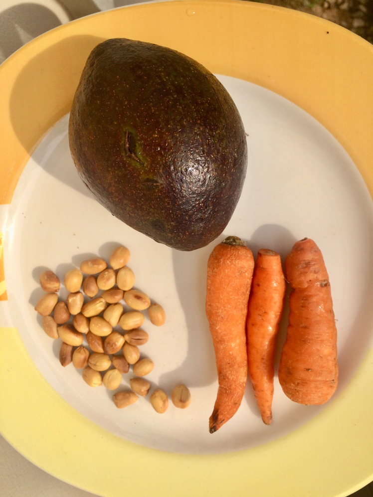 Ingredients for smoothie: Avocado, carrot and groundnut