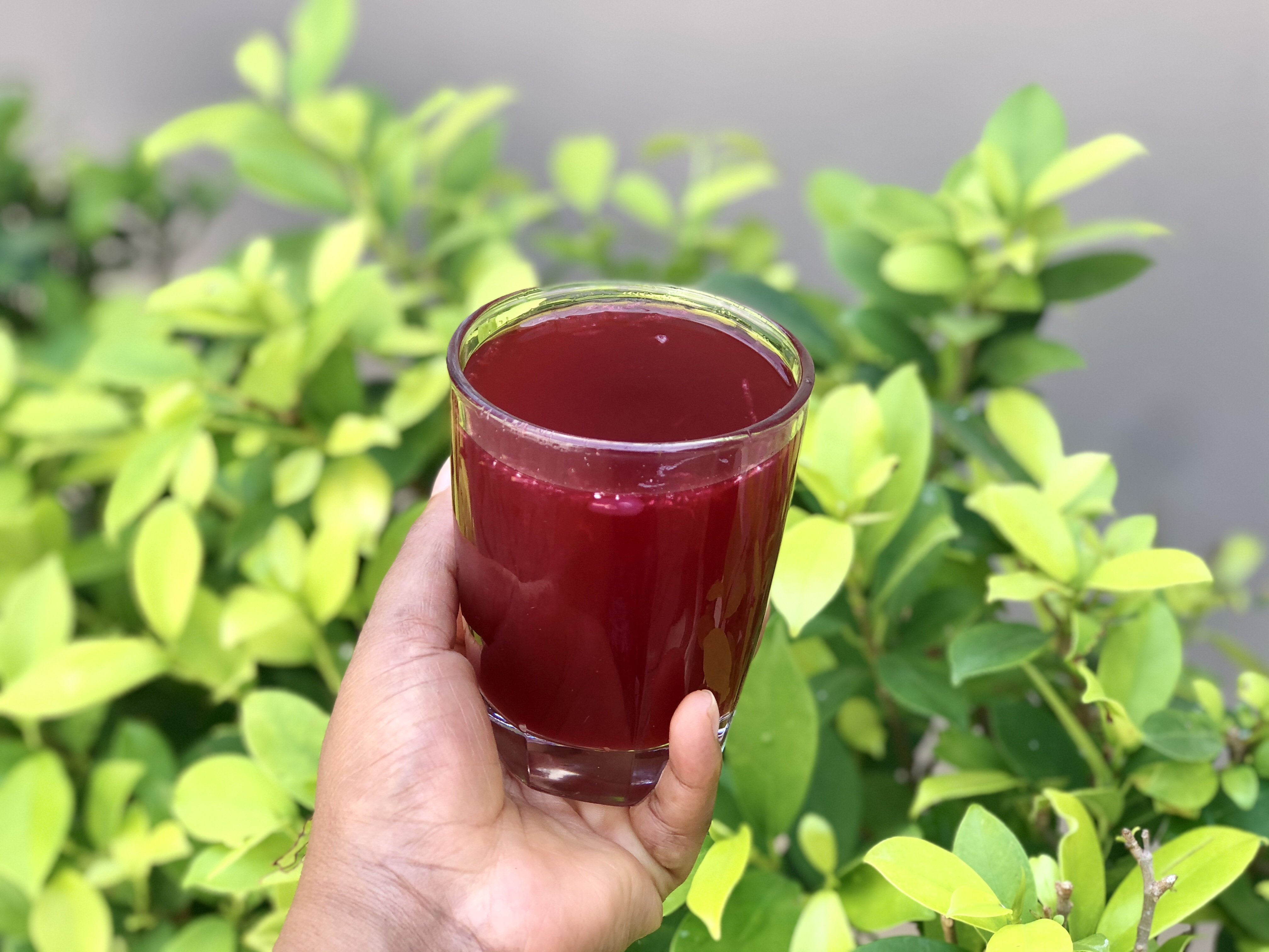 Zobo drink!